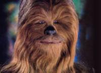 Wookiekid
